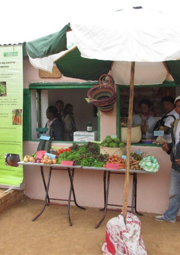 agriculture naturelle à Madagascar