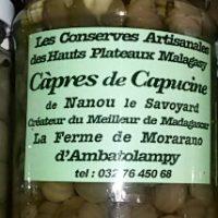 Câpres de Capucine - 100g